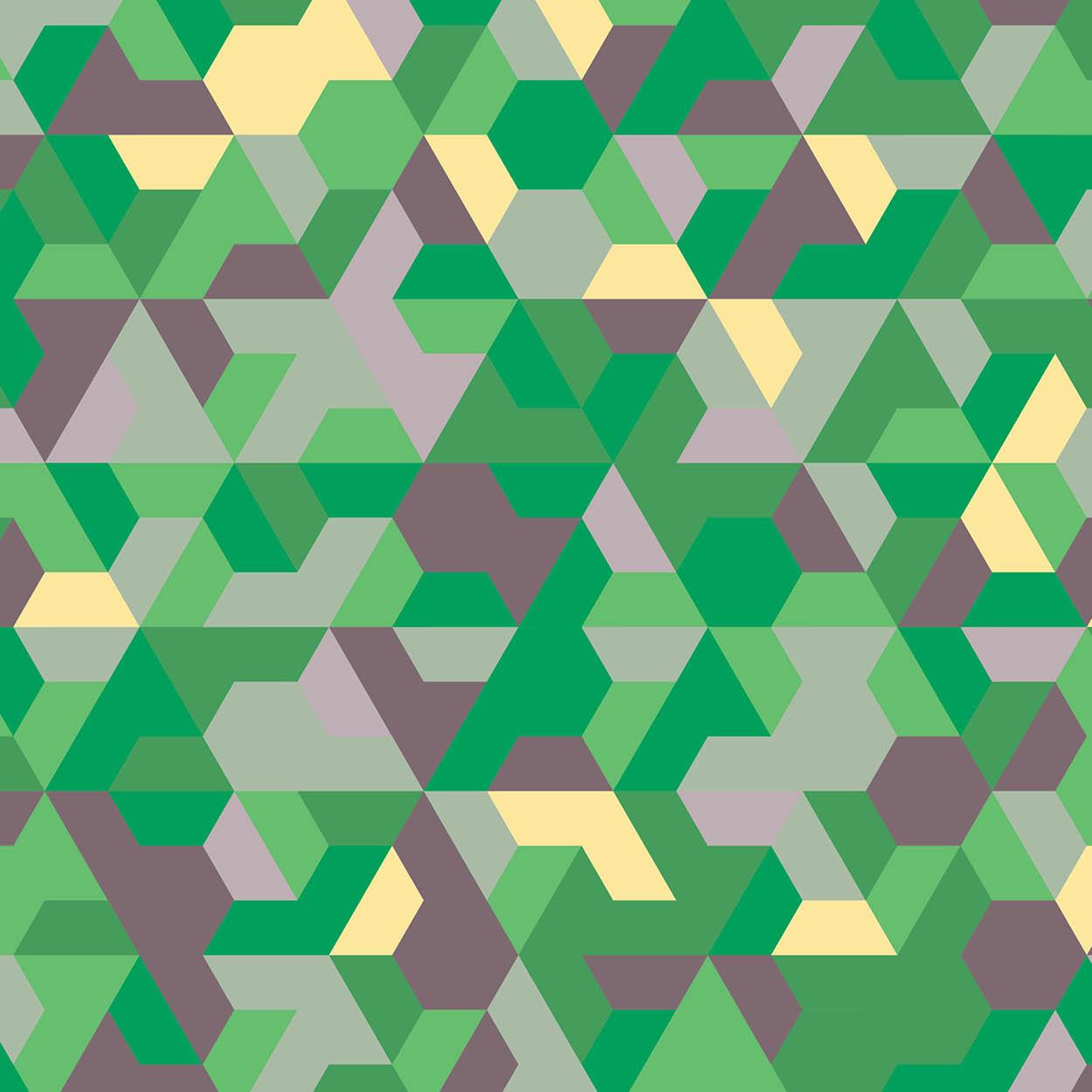 Tri Trapezium 6